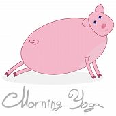 Morning Yoga With A Pig. The Pig Is Engaged In Stretching The Legs. Pig Isolated On White Background poster