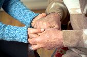 picture of compassion  - close up shot of hands holding each other - JPG