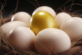 stock photo of nest-egg  - nest of egg with one golden egg - JPG