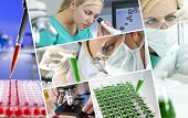 stock photo of specimens  - A beautiful young female medical or scientific researcher using her microscope doing scientific research in a Laboratory - JPG