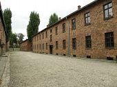 Auschwitz - Blocks Of Death