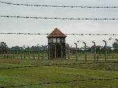Watchtower In Auschwitz