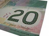 Canadian 20 $