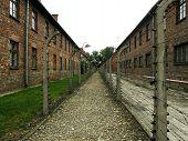 Auschwitz - Corridor Under Power