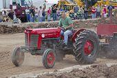 Massey Ferguson Tractor Pulling