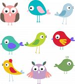 set of different cute bird cartoon