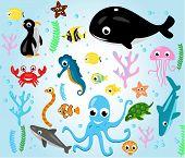 fish cartoon sea creatures