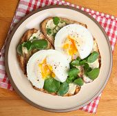 Poached eggs on toast with watercress.