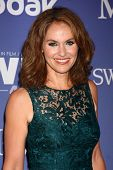 LOS ANGELES - JUN 12:  Amy Brenneman arrives at the Crystal and Lucy Awards 2013 at the Beverly Hilt