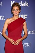 LOS ANGELES - JUN 12:  Stana Katic arrives at the Crystal and Lucy Awards 2013 at the Beverly Hilton