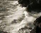 Seashore Cornwall