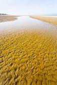 Sandy La Manche Coastline In Normandy