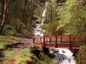 Bridge Of Beauty