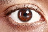 picture of ophthalmology  - Close up picture of brown eyes from a young man - JPG
