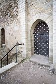 Fortification Door