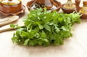 stock photo of tagine  - Fresh bunch of coriander on the table - JPG