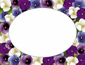 Pansy Flower Picture Frame, Oval
