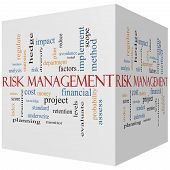 Risk Management 3D Cube Word Cloud Concept