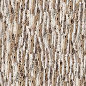 Petrified wood (seamless background)