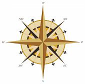 Vintage wind rose compass