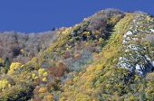 autumnal hills in the valley of Aspe, Pyrenees, France