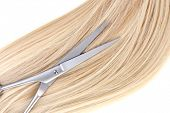 Long blond hair and scissors close up