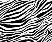 Zebra skin vector, seamless