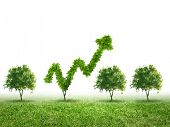 Conceptual image of green plant shaped like graph