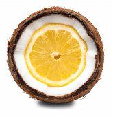 Lemon Inside Coconut Isolated On White
