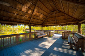 picture of collier  - Empty benches on a bridge in a forest Kirby Storter Roadside Park Ochopee Collier County Florida USA - JPG