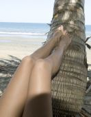 Womans Shapely Legs Resting On Coconut Tree On Tropical Beach