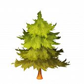 Vector illustration of fir-tree