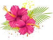 picture of backround  - Two pink hibiscus flowers and palm leaves on grunge splattered backround - JPG