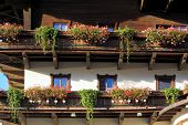 Guest house in Austria. Front of the house is traditionally decorated with pots of geraniums