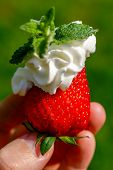picture of whip-hand  - Hand holding a strawberry which is decorated with whipped cream and mint - JPG