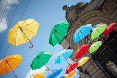 Umbrellas In Lviv