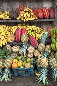 Cocoa Fruit Surrounded By Other Tropical Fruits On The Counter Of The Latin America Street Market, E