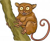 Tarsier Animal Cartoon Illustration