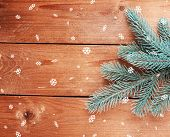 Green fir tree on wooden background