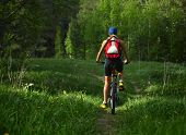 Woman on bicycle moving through spring meadow in the fores