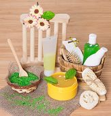 Spa And Body Care Cosmetics And Accessories