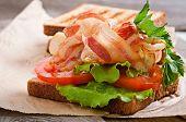 foto of baps  - hot big sandwich - JPG