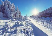 Winter in Glacier Park,Montana,USA