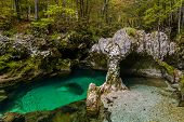 Green And Clear Water At