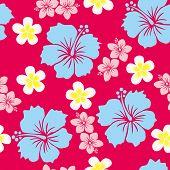Hibiscus Background
