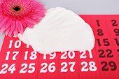 Sanitary pads, calendar, towel and pink Gerber on light background
