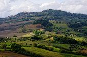 Typical Landscape In The Tuscany,near Town Voltera,  Italy.