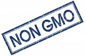 Non Gmo Blue Square Stamp Isolated On White Background