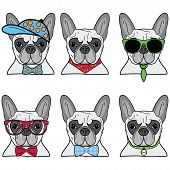 stock photo of french beret  - French bulldog set of 6 icons  of vary hipsters dogs - JPG