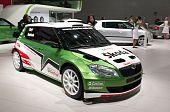Skoda Fabia WRC edition